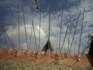 Fitting a Cowl or Anti Bird spikes will stop birds blocking and nesting in your chimneys.